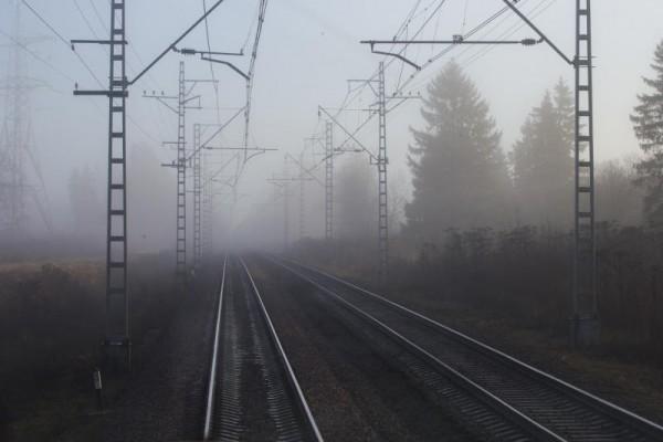 Албин заявил о возможном развитии кольцевой железной дороги в Петербурге — Агентство Бизнес Новостей — Ремонт дома