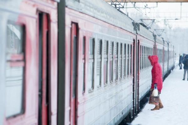 Lux Express увеличил пассажиропоток из Петербурга на 5% в I полугодии год к году — Ремонт дома
