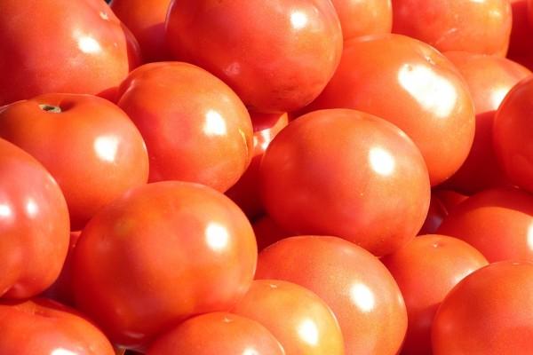 Ткачев: Россия закроет дефицит томатов в ближайшую пятилетку — Агентство Бизнес Новостей — Ремонт дома