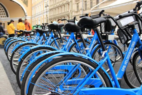 «Трансперенси» в Петербурге просит УФАС проверить контракт на велодорожки — Ремонт дома